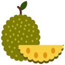 food, fruit, fruits, jackfruit icon