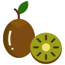food, fruit, fruits, kiwi icon