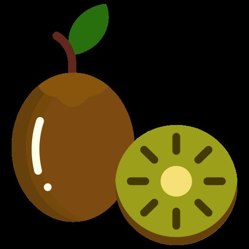 Food, fruit, fruits, kiwi icon - Free download on Iconfinder