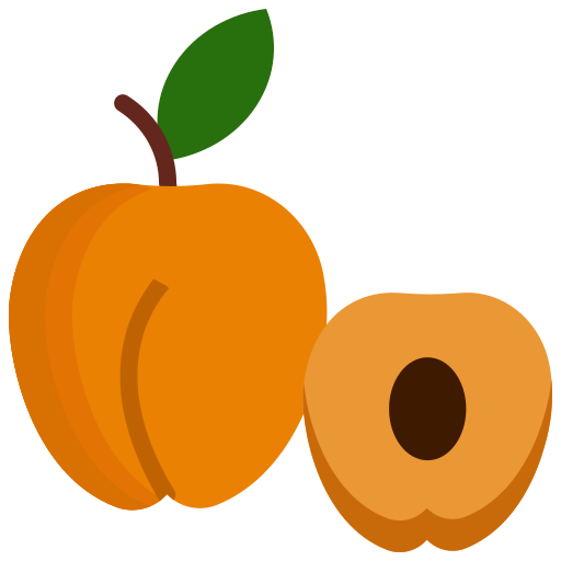 Apricot, food, fruit, fruits icon - Free download