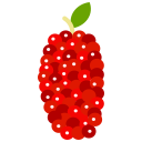 food, fruit, fruits, mulberry icon