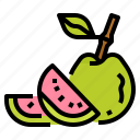 fruit, guava, healthy, vegetarian icon