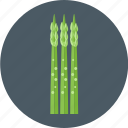 asparagus, vegetable icon