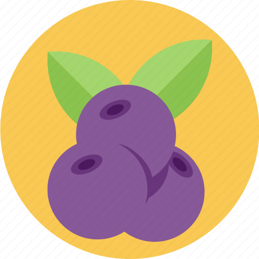 berries, blueberry, fruties icon