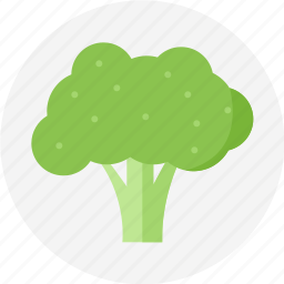 broccoli, green vegetable, vegetable icon
