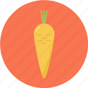 carrot, orange, orange fruit icon