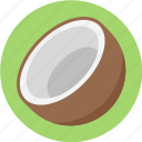 coconut, coconut fruit, coconut slice icon