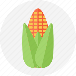 corn, japanesecorn, sweetcorn, yellow corn icon