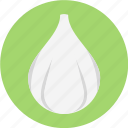 clove garlic, fresh garlic, garlic, minced garlic icon