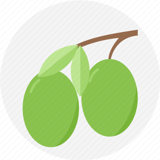 fruit, olive, petite fruit icon