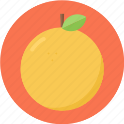 citrus, orange, orangefruit icon