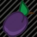 food, fruit, plant, plum icon