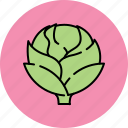 artichoke, crunchy, nutritious, vegetable icon
