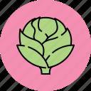 artichoke, crunchy, nutritious, vegetable icon