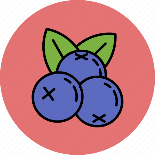 blueberries, fruit, nutritious, sweet icon