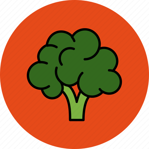 brocolli, crunchy, food, vegetable icon