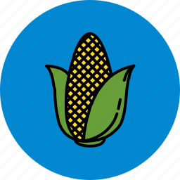 corn, farm, healthy, nutritious, vegetable icon