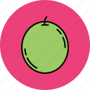 food, fruit, grape, juicy icon