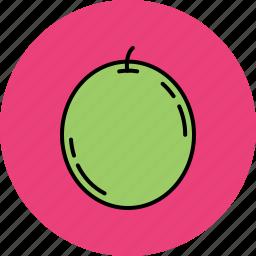 food, fruit, grape, juicy icon