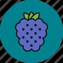food, fruit, grapes, juicy, sweet