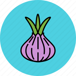 crunchy, onion, spring, taste, vegetable icon