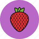 fruit, juicy, nutritious, strawberry, sweet icon