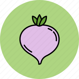 crunchy, healthy, nutritious, turnip, vegetable icon