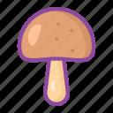 mushroom, fungus, vegetable, cooking, food