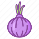 onion, vegetable, cooking, kitchen, food