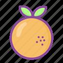 orange, fruit, vegetable, juice, food