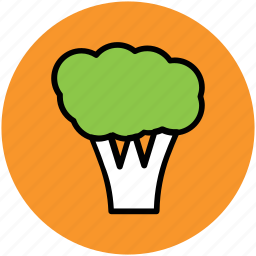 broccoli, food, healthy food, nutrition, vegetable icon