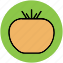 diet, food, fruit, healthy diet, persimmons icon