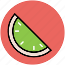 food, fruit, piece of watermelon, watermelon, watermelon slice icon