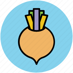 diet, food, nutrition, root vegetable, turnip, vegetable icon