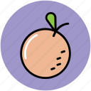 citrus, citrus fruit, food, fruit, healthy diet, orange icon