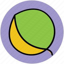 apricot, food, fruit, healthy food, nutrition, peach icon