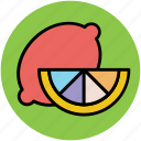 citrus, food, fruit, lemon, lemon slice, lime icon