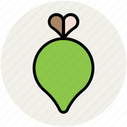 diet, food, nutrition, root vegetable, turnip, vegetable icon