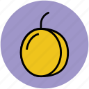 apricot, diet, food, fruit, healthy food, peach icon