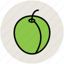 apricot, food, fruit, peach, plum icon