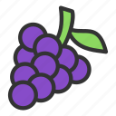 berry, blackcurrant, crop, grape icon