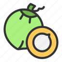 beach, coconut, crop, drink, fruit, summer icon