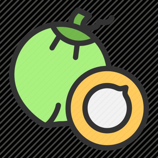 Coconut, crop, beach, drink, fruit, summer icon - Download on Iconfinder
