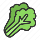 crop, leaf, lettuce, vegetable icon