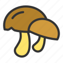 agriculture, crop, food, mushroom, vegetable icon