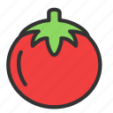 agriculture, crop, food, tomato, vegetable icon