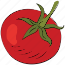 tomato, nutrition, organic, food, healthy food, fruit icon