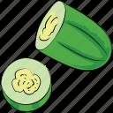 squash plant, food, cucumber, healthy diet, vegetable, cucumis sativus icon