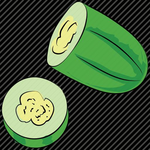 cucumber, cucumis sativus, food, healthy diet, squash plant, vegetable icon