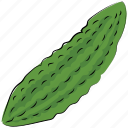 bitter gourd, bitter melon, diet, food, nutrition, vegetable icon